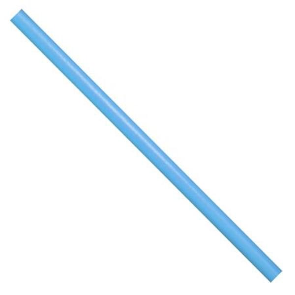 Penová tyč Worm - modrá